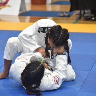 Brazilian Jiu-jitsu 2