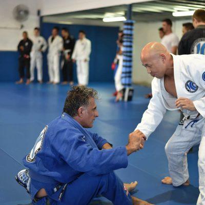 Brazilian Jiu-jitsu 4